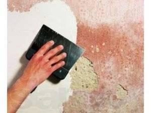 Особенности поклейки обоев на крашеные стены