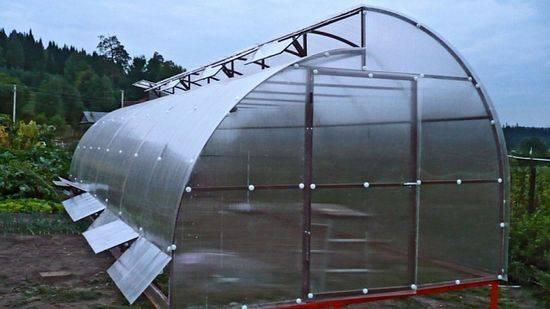 Уютный дом для огурцов, или как построить для овощей парник из поликарбоната с открывающимся верхом