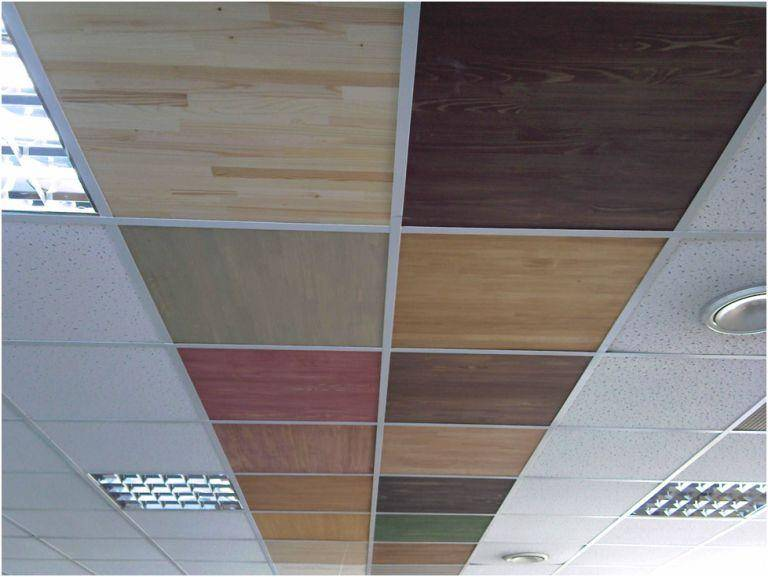 Потолок армстронг: устройство, виды, монтаж, фото, видео