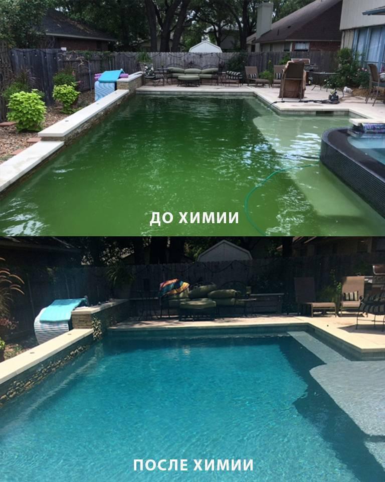 Как очистить бассейн на даче своими руками: полезные советы и рецепты