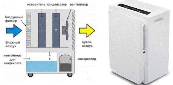 Погреб сырой - быстрое решение проблемы - самстрой - строительство, дизайн, архитектура.