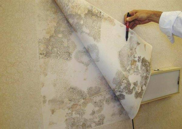 Отчего морщатся обои при поклейке на стенах и в углах? лучшие способы устранить дефекты