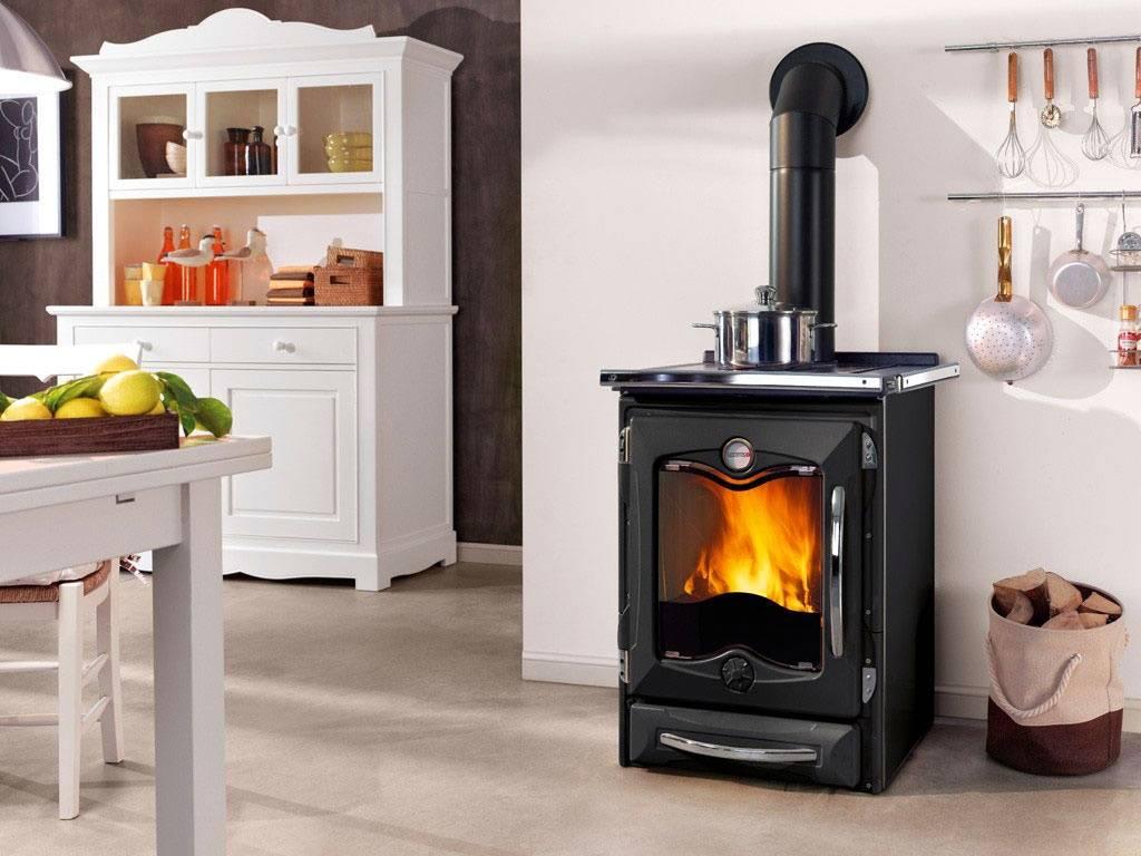 Камин с варочной поверхностью на кухне (49 фото): отопительно-варочная модель с панелью для кухни и гостиной, идеи-2021 дизайна в интерьере, каминные вытяжки для частного дома