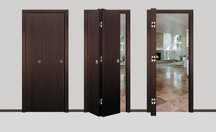 Складные двери: стеклянные и алюминиевые, купе, конструкции книжка и гамошка, фото в интерьере