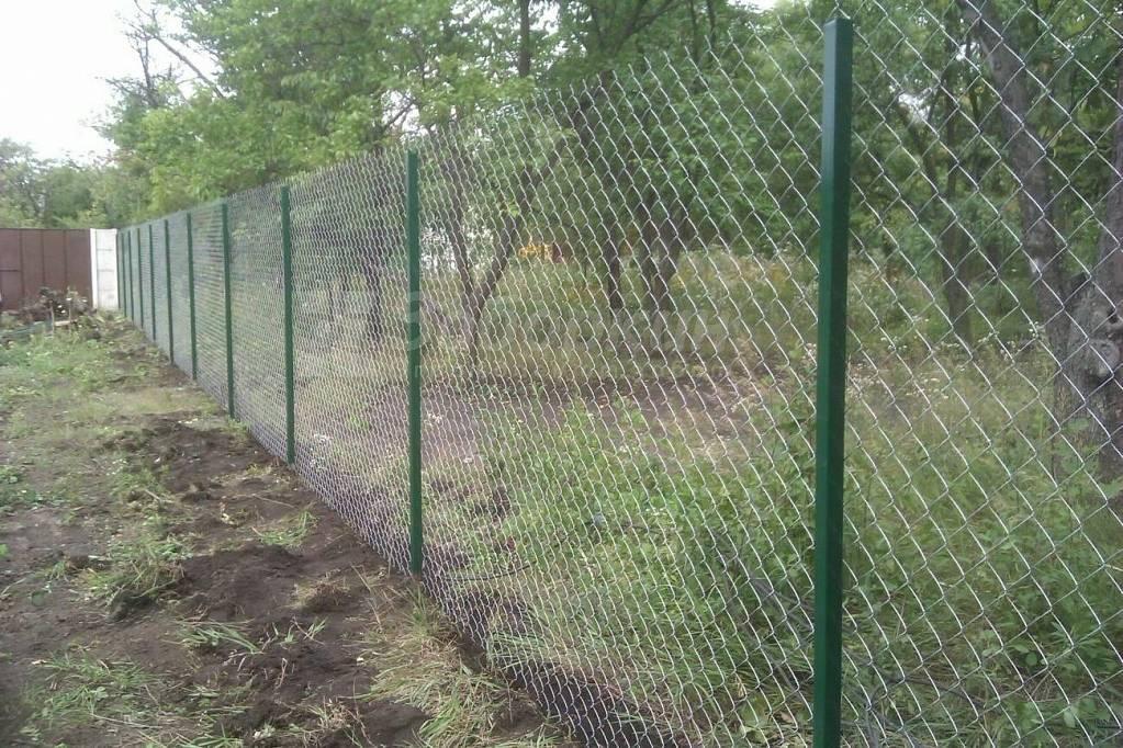 Забор из сетки-рабицы своими руками: инструкция по установке