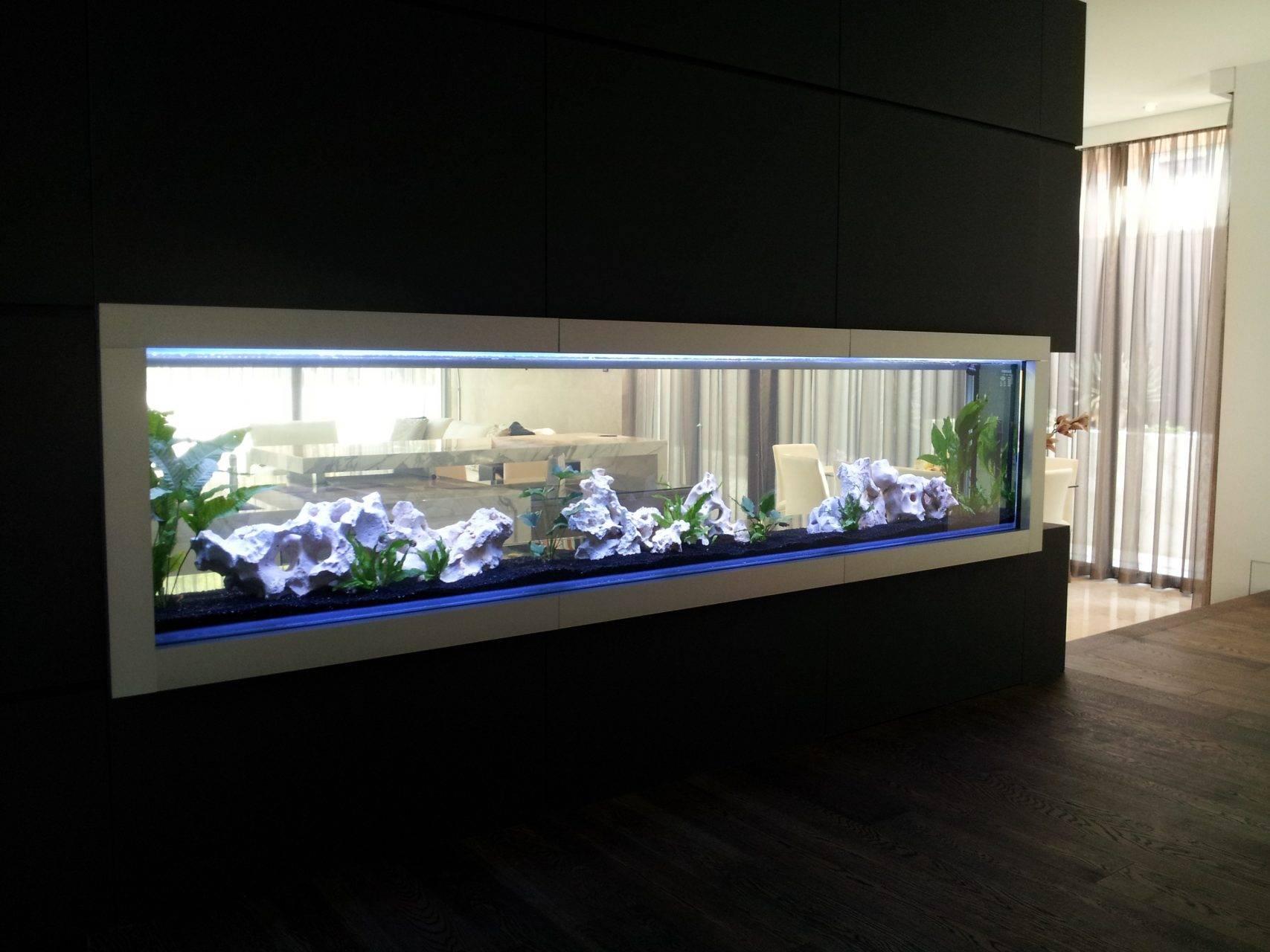 Дизайн аквариума своими руками: как сделать аквариум красивым