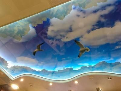 3д потолки натяжные фото
