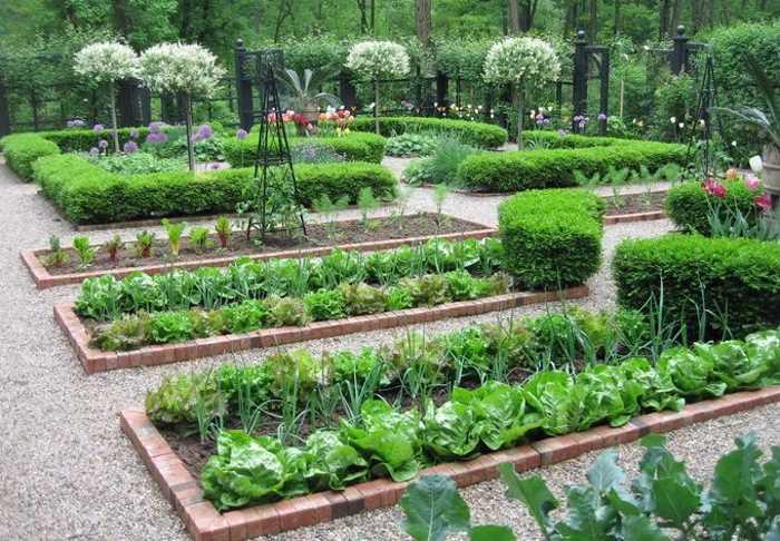 Красивые грядки своими руками: декоративный огород, французский, английский, фото