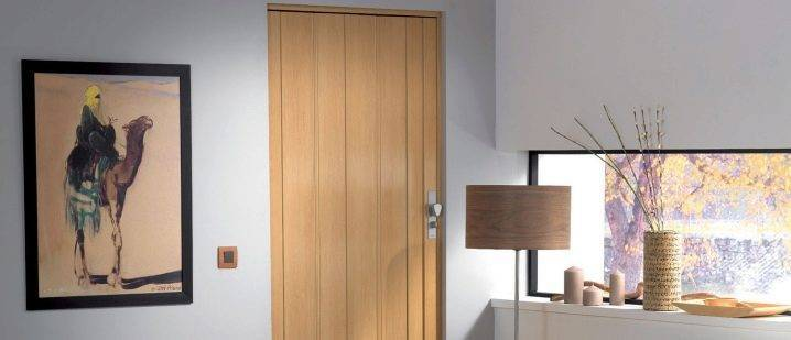 Складные межкомнатные двери – компактное решение в интерьере