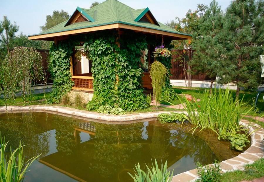 Как сделать мини-пруд из покрышки на дачном участке: мастер-классы и идеи