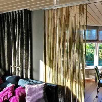 Комнатный бамбук: уход в домашних условиях, топ 7 сортов и его выращивание