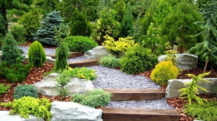 Дизайн сада на даче - выбор стиля и примеры оформления своими руками (180 фото)