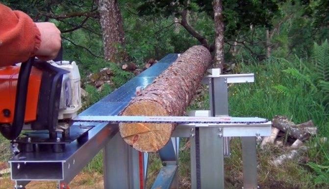 Как правильно спиливать деревья разной толщины