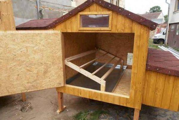 Как построить летний курятник на 10 кур?