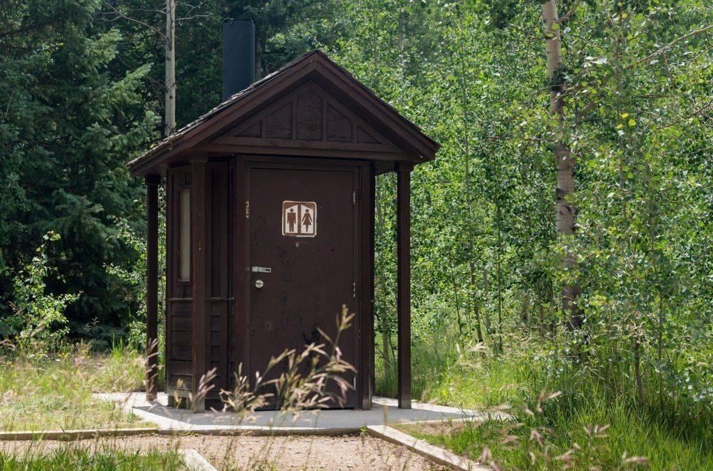 Убрать туалет на даче: как избавиться от запаха, какое средство засыпать?