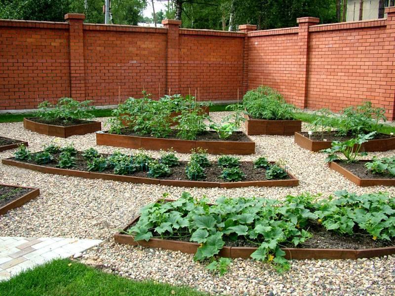 Ландшафтный дизайн садового участка площадью 6 соток