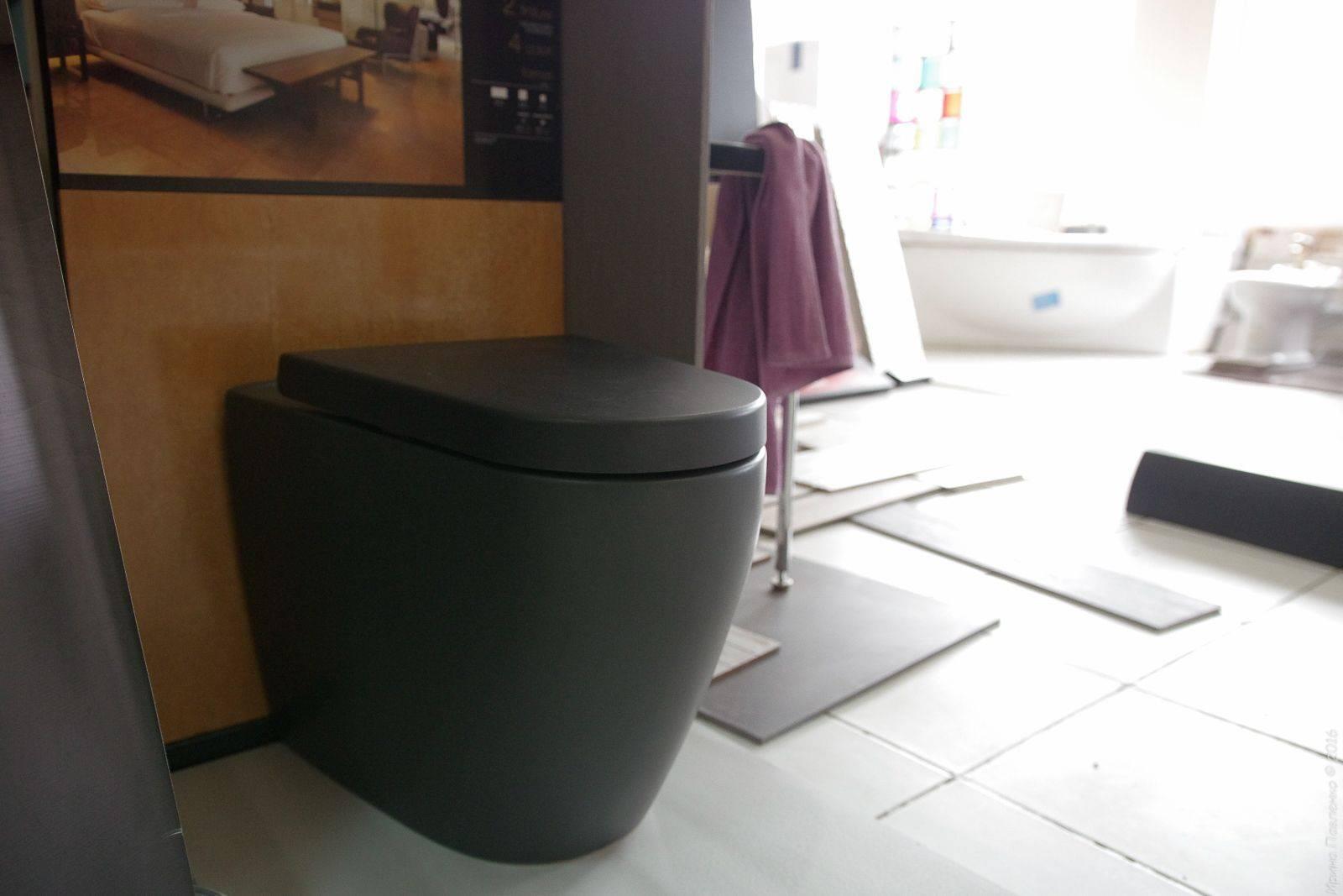 Черный туалет (49 фото): стиль дизайна в квартире с унитазом в темных тонах, красно-черный туалет с белым