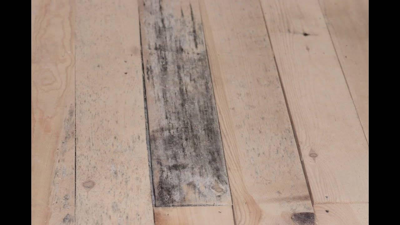 Обработка древесины антисептиком - какой выбрать, в чем отличия