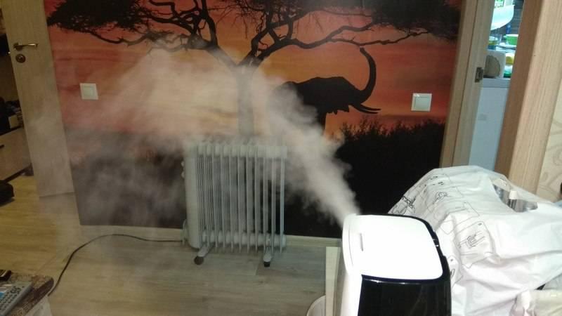 Увлажнитель воздуха: польза и вред для человека, ультразвуковые увлажнители