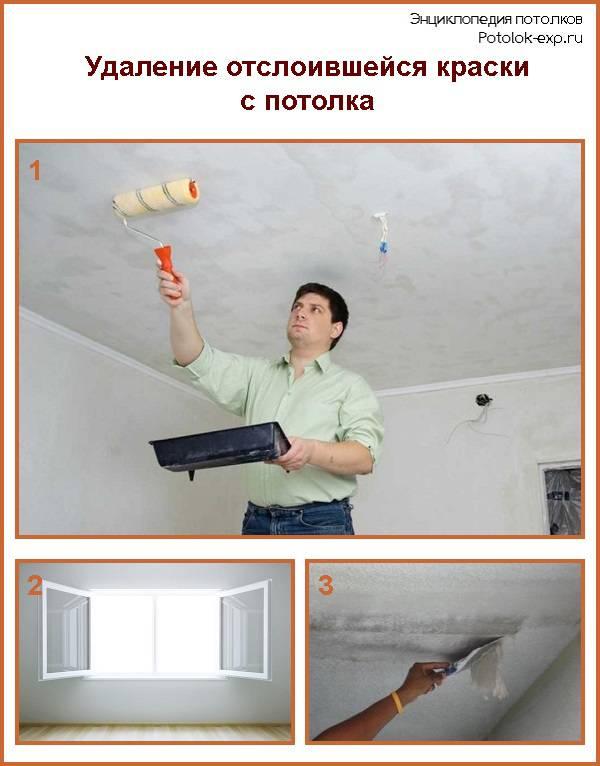 Валик для покраски стен (39 фото): каким лучше красить потолок акриловой и водно-дисперсионной краской