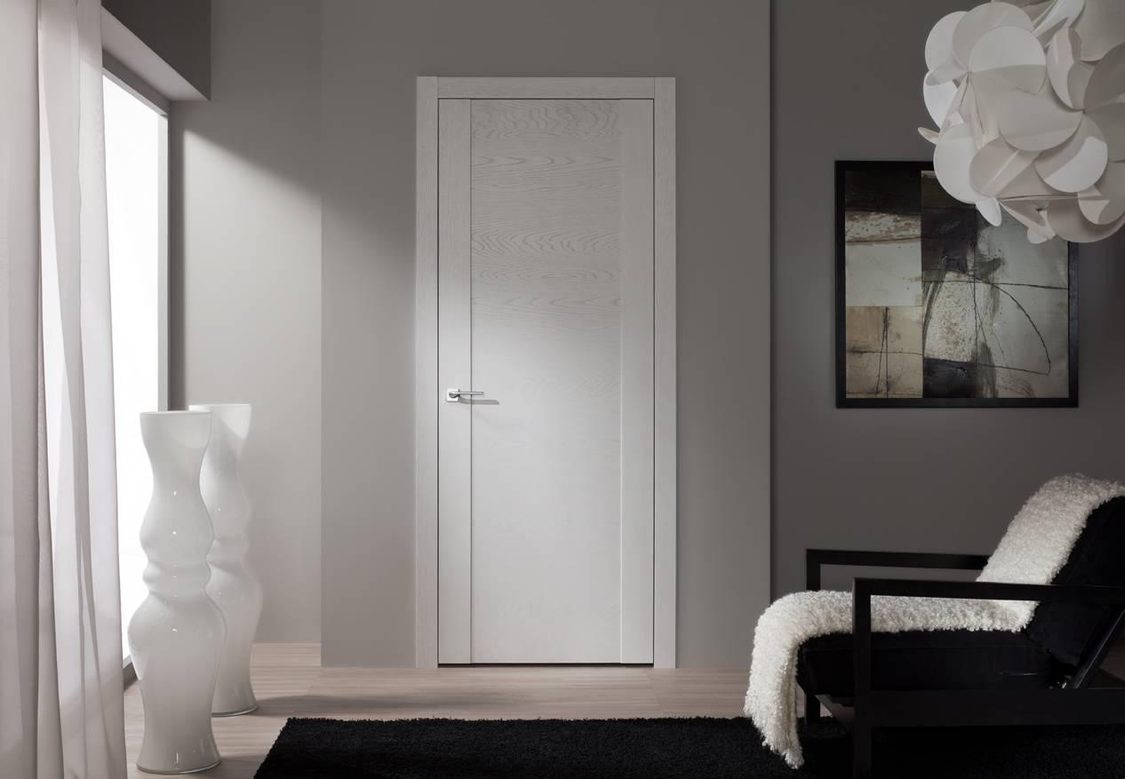Эмалированные двери: что это такое, их характер