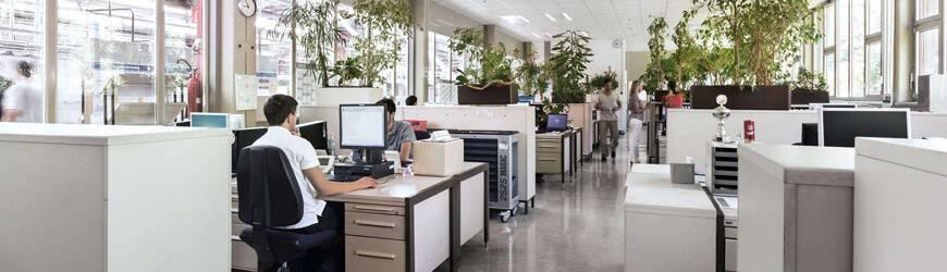 Освещение офиса: что учесть в первую очередь