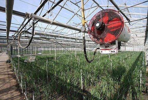 Обогрев грунта в теплице: водяной теплый пол для подогрева почвы