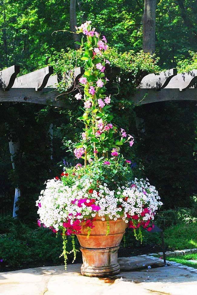 Уличные вазоны для цветов: 100+ фото [идей для частного двора]
