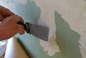 Как приготовить штукатуренные стены под покраску: технология штукатурки после подготовки, требования к основанию и выбор краски для окрашивания после оштукатуривания