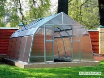 Стеклянный парник на дачном участке, разновидности стеклянных теплиц и критерии их выбора