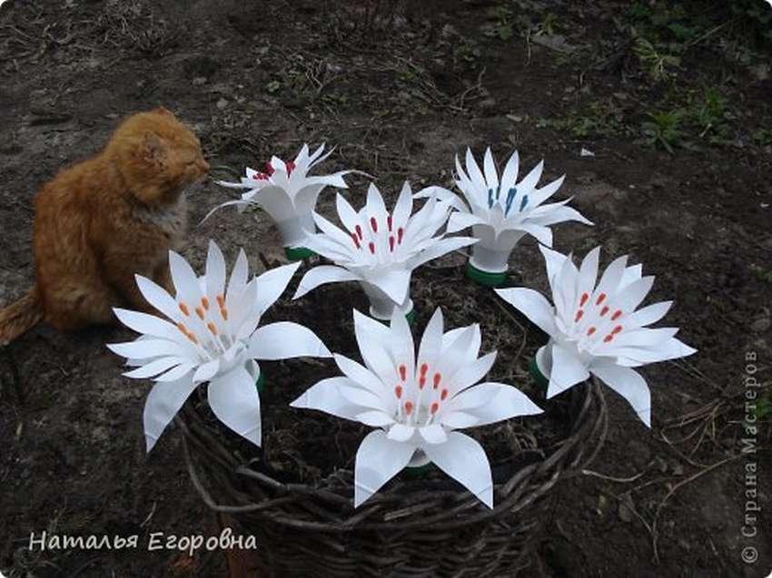 Орхидея, ромашка, роза, лилия, мак и тюльпан из пластиковых бутылок
