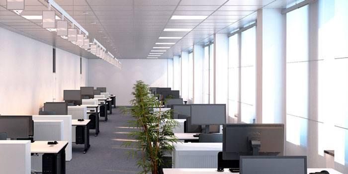 Освещение рабочего места за компьютером: нормы и правила | 1posvetu.ru