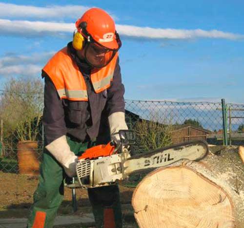 Как пилить бензопилами деревья пошаговая инструкция – мои инструменты