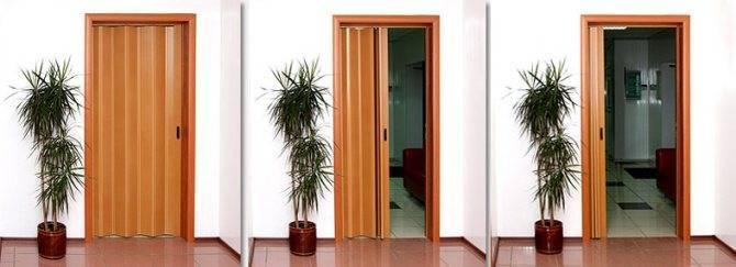 Дверь-гармошка — куда установить ее в квартире? фото