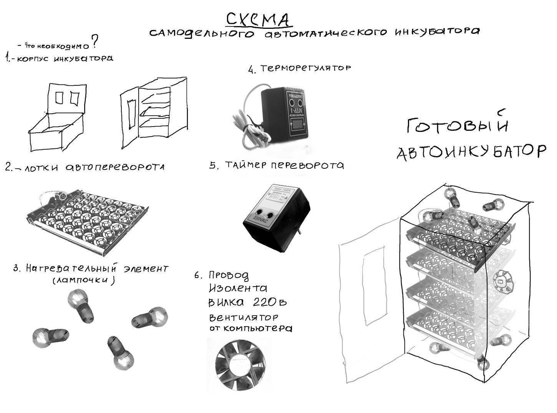 Как сделать инкубатор своими руками в домашних условиях: схема, описание, самый легкий способ