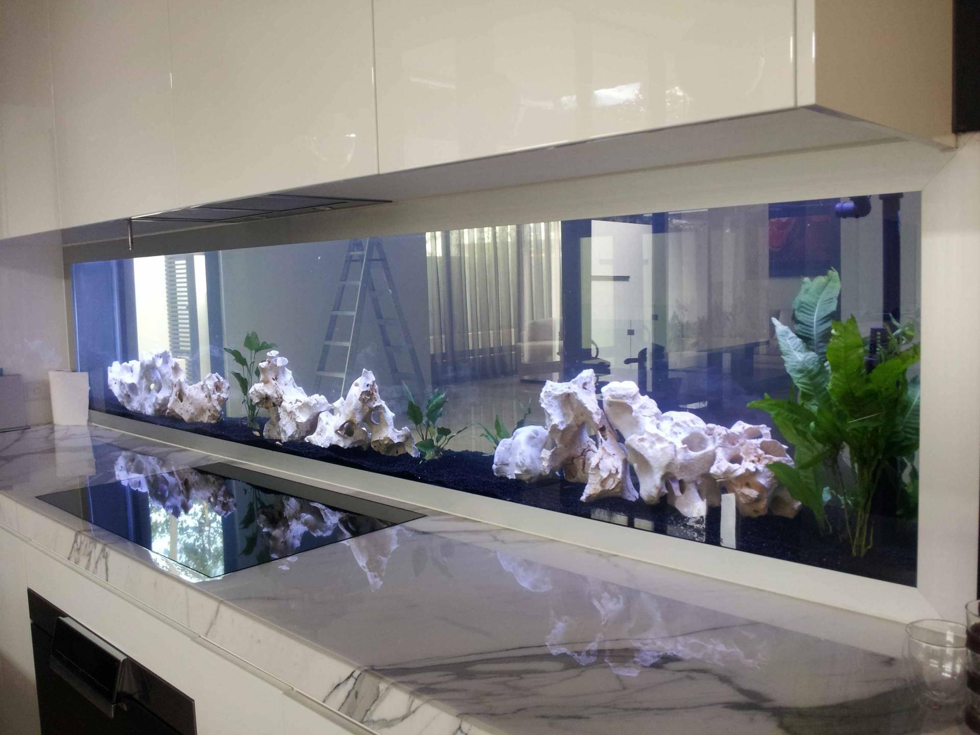 Оформление аквариума: 100 фото красивых примеров