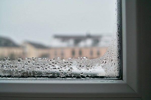 Почему сыреют стены в квартире или доме и что с этим делать?