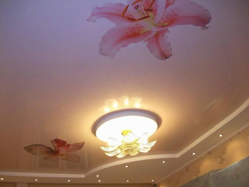 Фото натяжные потолки с цветами - самые разные варианты, 20 фото