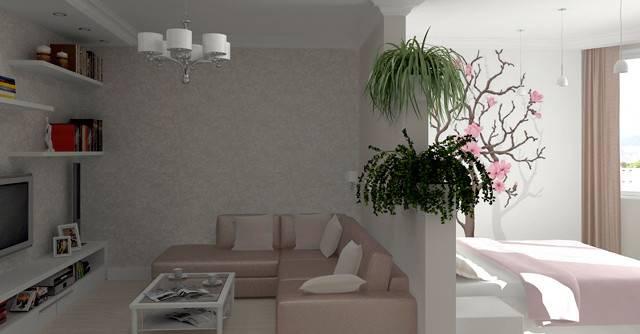 Зонирование комнаты: идеи и варианты (95 фото)