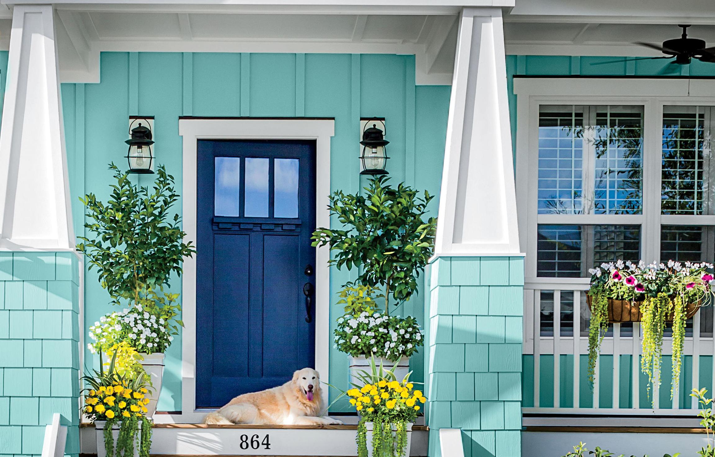 Как и чем красиво покрасить старые межкомнатные деревянные двери своими руками - каким цветом и краской