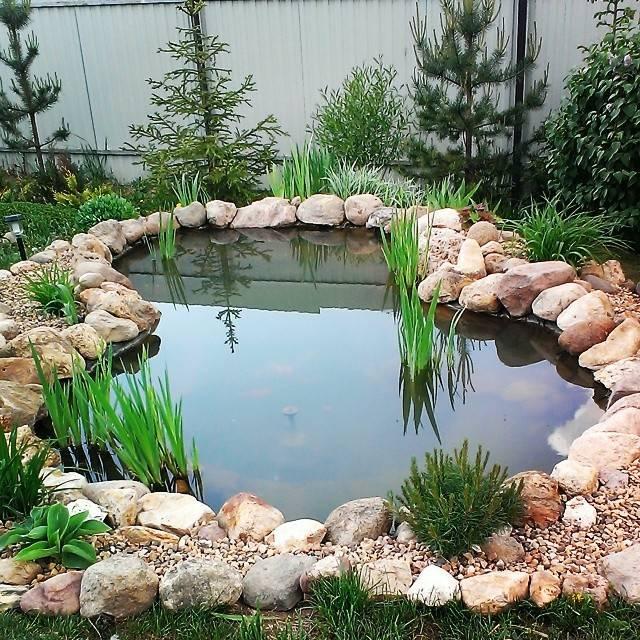 Открытие, которое успешно обживает дачные сады уже много лет, — декоративный пруд из автопокрышки своими руками