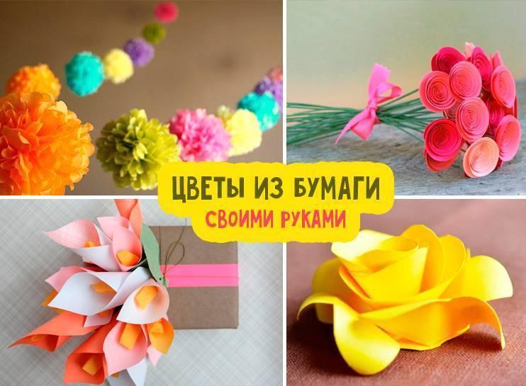 Цветы из гофрированной бумаги своими руками, 10 мастер-классов