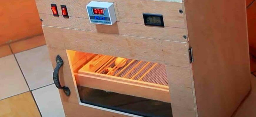 Как сделать инкубатор с автоматическим поворотом своими руками в домашних условиях