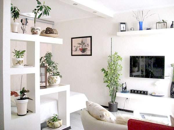 Оформление и декор ниши в стене: дизайнерские идеи и решения в разных комнатах