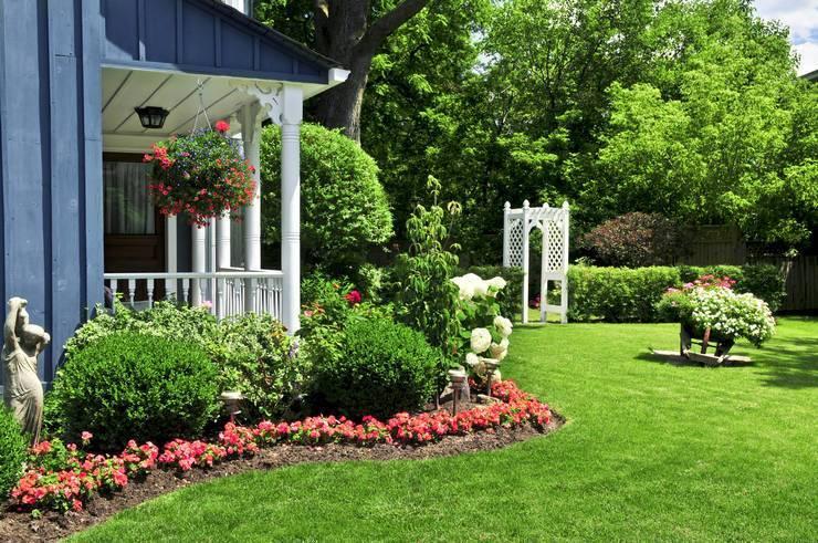 Как создать красивый палисадник у дома своими руками: советы профессионалов