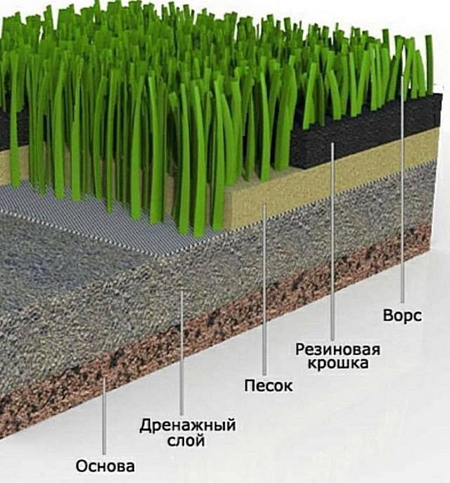 Газонная трава для дачи: выбор для разного климата и особенностей участка