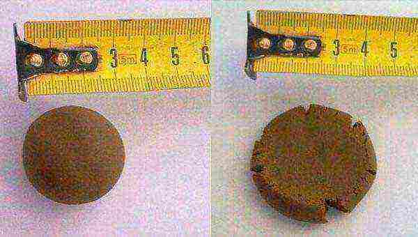 Глиняная штукатурка: преимущества, применение, нанесение