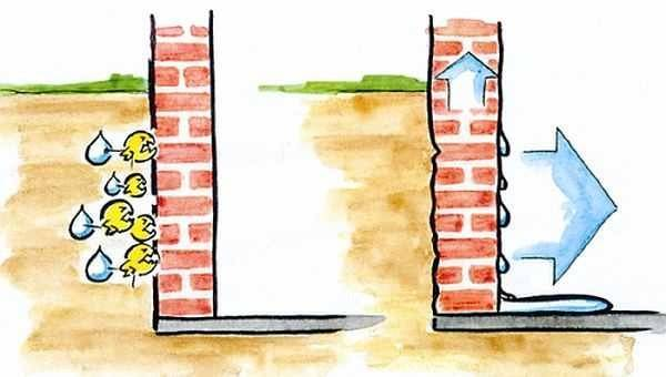 Конденсат в погребе (сырость в подвале, влажность): как избавиться?