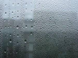 Почему запотевают пластиковые окна и как с этим бороться: фото, видео
