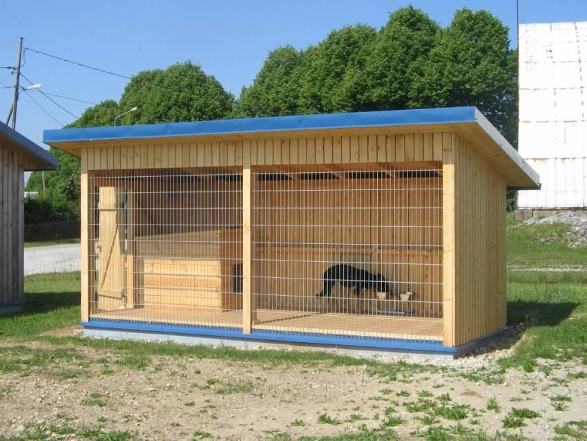 Как построить правильный вольер для собаки